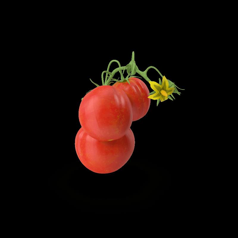 00001-tomaat